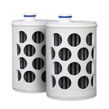 Water Bottle with Filter Cartridges